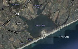 Mecox-Bay-the cut