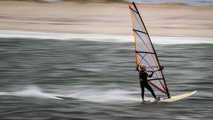 Silver Surfer Jan