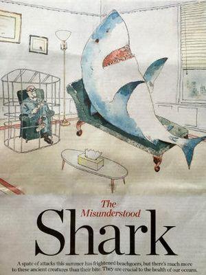 Misunderstood shark