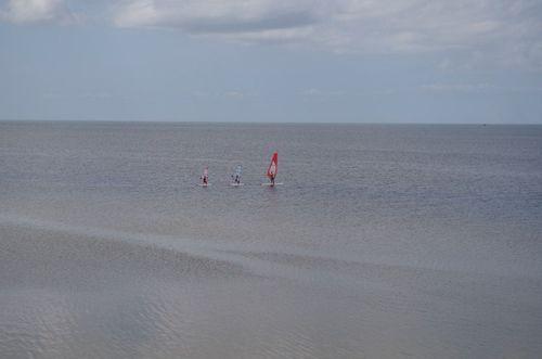 Family windsurfing